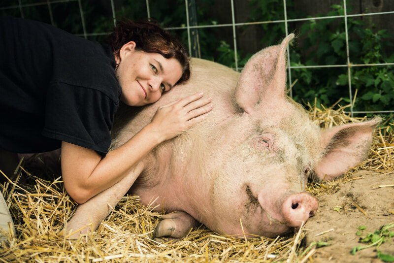 Brooke Reynolds hugs a pig on a bed of straw