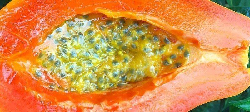 Papaya with Passion Fruit recipe from Nicolas Dudet