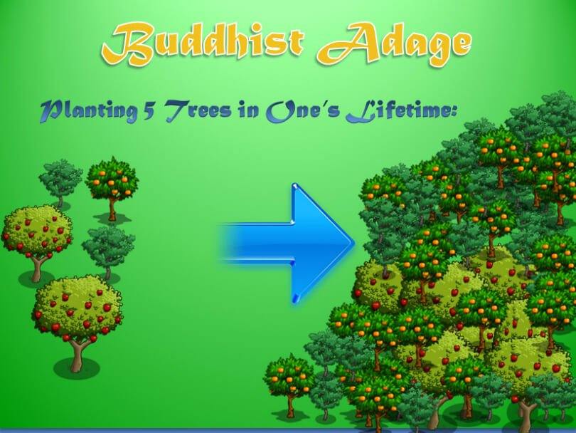 Illustration of Buddhist adage to plant five trees - fruit - flow in life