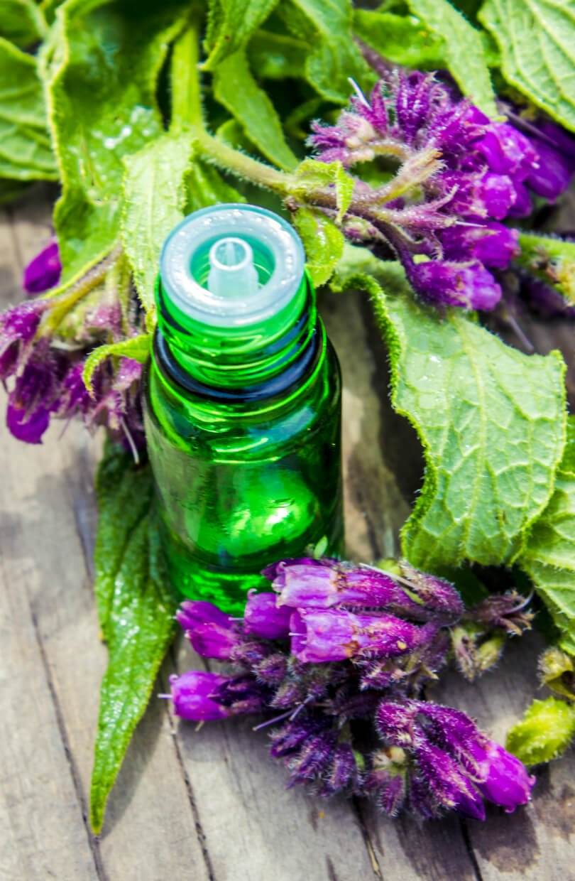 Comfrey leaves, flower and tincture - herbs for health