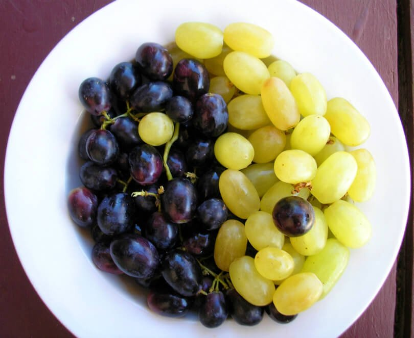 Grapes on a plate - fruit - flow in life - alignment - synchronicity