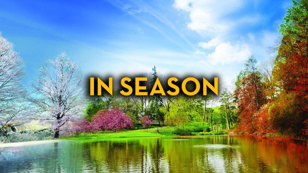 In Season - Fruit-Powered