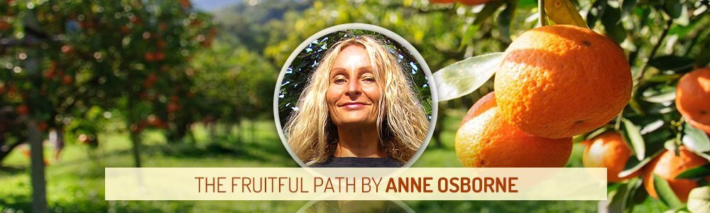 Insight From Natural Health Headers - The Fruitful Path by Anne Osborne - Fruit-Powered
