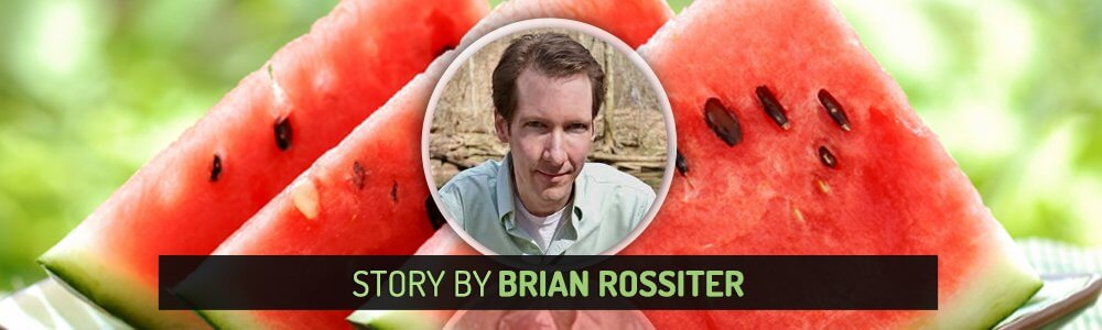 Story by Brian Rossiter - Fruit-Powered