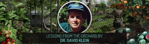 Insight from Natural Health Leaders - Lessons from the Orchard by Dr. David Klein - Fruit-Powered