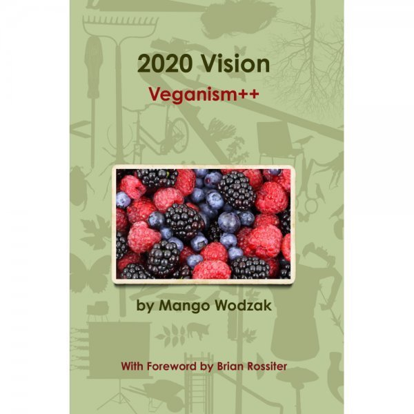2020 Vision by Mango Wodzak - front cover - Fruit-Powered Store
