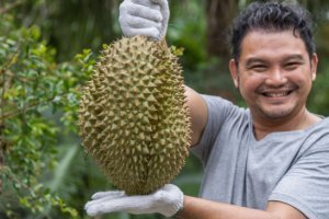 Coquism - durian farmer - Fruit-Powered