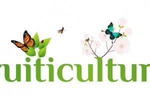 Fruiticulture logo - Fruit-Powered