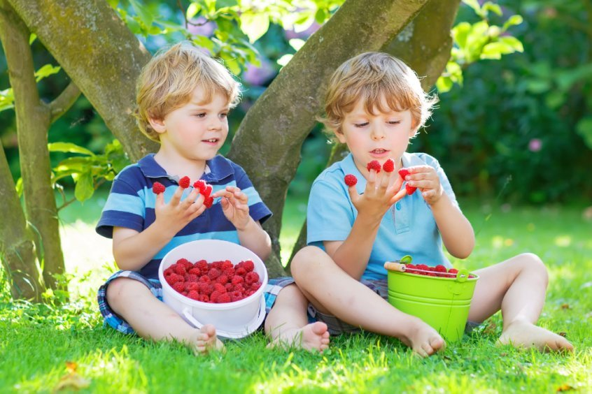 Make every day Earth Day to save the planet - boys eating raspberries - Fruit-Powered