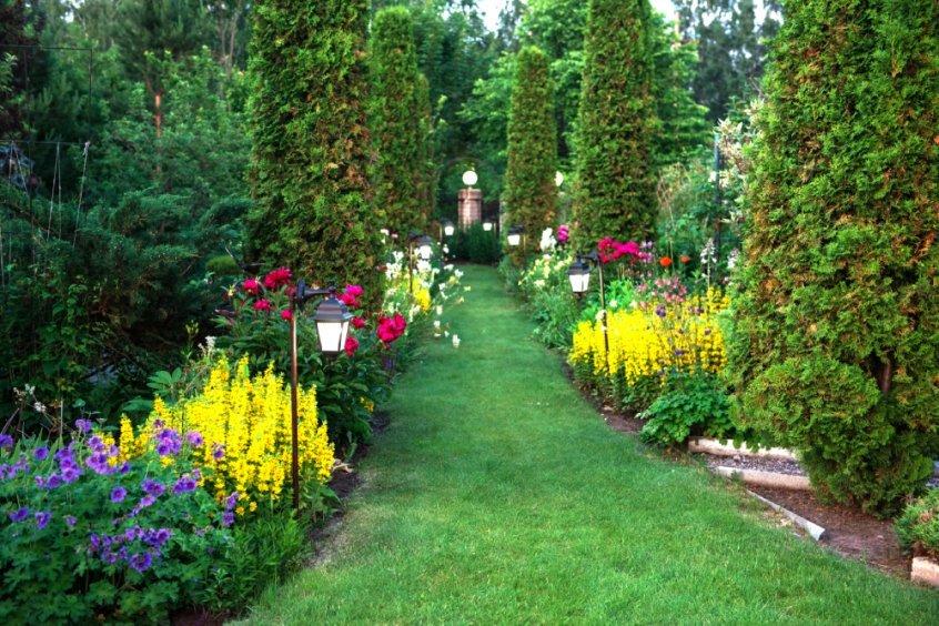 Botanical garden - Fruit-Powered
